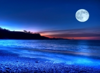 normal_playa_fantasia1.jpg
